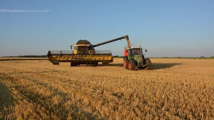 Les rendements 2018 de blé chez les éleveurs: plus de la moitié d'entre eux font plus de 60q/ha