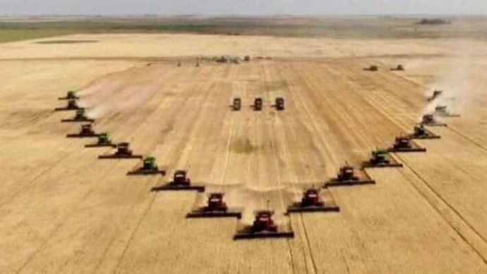 Les 20 moissonneuses-batteuses ont récolté les 258 hectares en quelques heures à Milestone, en Saskatchewan