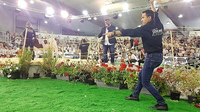 C'est une fille du taureau Blowtorch qui a fait grimper les enchères à leur maximum: 10400€