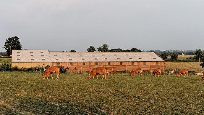 Téléchargez gratuitement les 8 repères pour bien choisir la couverture de son bâtiment d'élevage