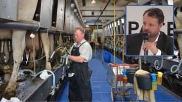 «Avec le modèle américain, les éleveurs français seraient payés 13% de plus»