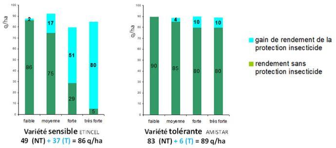 Comparaison de rendements et de gains acquis avec la lutte insecticide selon différentes pressions de JNO, entre une variété d'escourgeon sensible et une variété tolérante (regroupement 15 essais, campagnes 2014-2018)