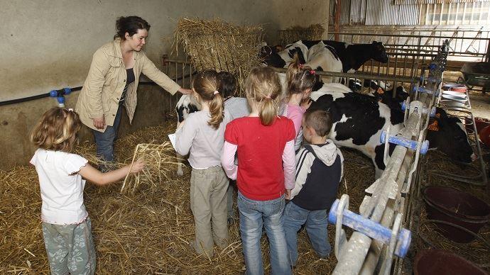 Visite d'un élevage pour des enfants