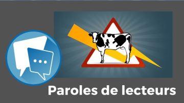 Des élevages pertubés par des nuisances électromagnétiques