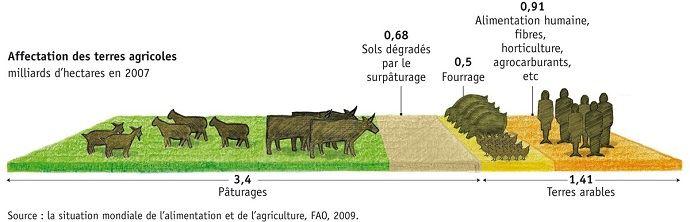 Selon la FAO, l'élevage occupe 3,4 milliards d'hectares de surface agricoles