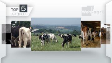 Un poème viral et le bien-être en élevage, les deux sujets phares de la semaine