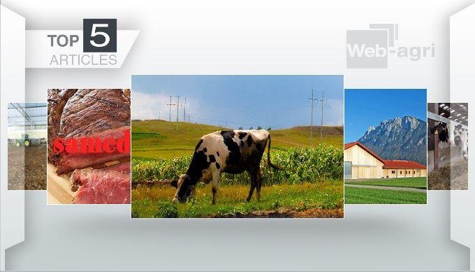 Les articles les plus lus de la semaine sur Web-agri.