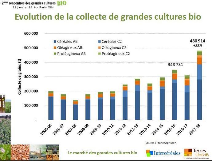 Évolution de la collecte en grandes cultures bio