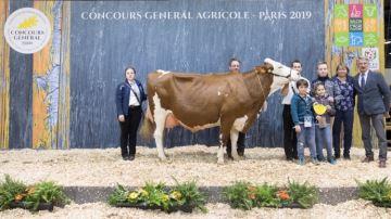 Ionaf et Lillusion remportent le concours de la race Montbéliarde