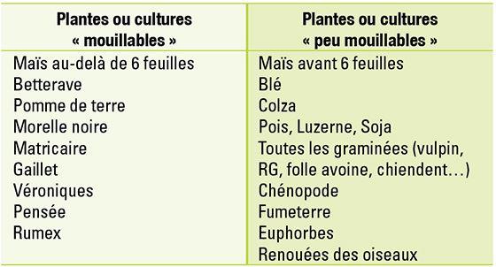 Exemples de plantes mouillables et non mouillables