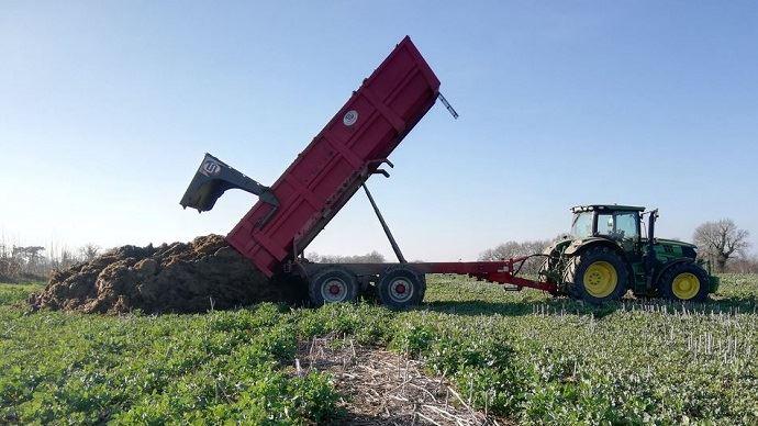 Pour valoriser pleinement l'effet azote des fumiers de bovins, il est conseillé de les épandre 1,5 à 2 mois avant le semis.