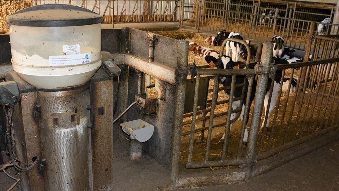 L'alimentation des veaux laitiers au Dal n'est pas une technique très répandue. Seuls 10,2% des répondants au sondage l'utilisent. Deux tiers des éleveurs privilégient la distribution aux seaux.