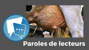 Des vaches à 25000kg de lait dans 50 ans: un mythe ou la réalité ?