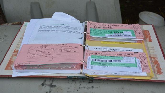 Le blocage de la délivrance des cartes vertes devrait reprendre d'ici deux mois pour les éleveurs n'ayant pas régularisé leur situation.