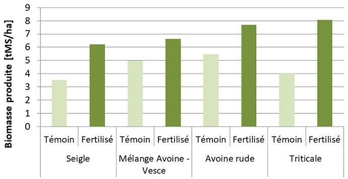 Biomasse produite par les Cive avec ou sans fertilisation