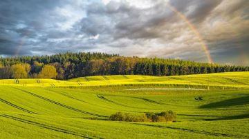 La contribution de l'agriculture à l'économie française en hausse en 2018