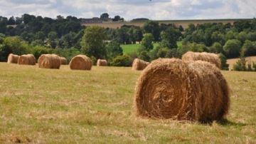 De nouvelles mesures d'aide pour les agriculteurs touchés par lasécheresse