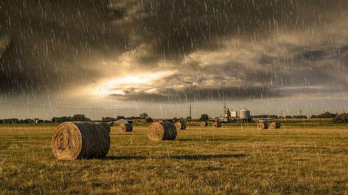Les pluies soulagent les sols français