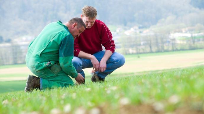 Deux agriculteurs dans un champs