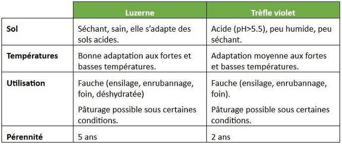 Comparaison luzerne/trèfle violet: quelle légumineuse dans mon système?