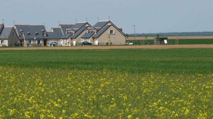 Le gouvernement a proposé samedi de fixer une distance minimale entre habitations et zones d'épandage de produits phytosanitaires agricoles à 5 mètres pour les cultures dites basses (céréales par exemple). (©Terre-net Média)