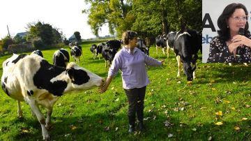 De 4000 à 5000 euros pour un éleveur économisant 400 tonnes de CO2