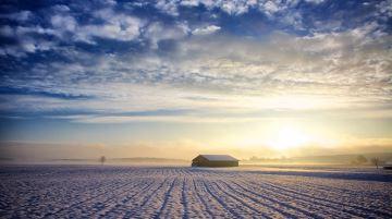 Quel temps pour la fin des semis et le début de l'hiver?