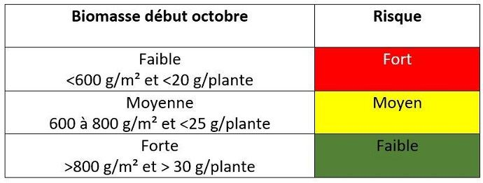 Évaluer l'état de croissance du colza début octobre
