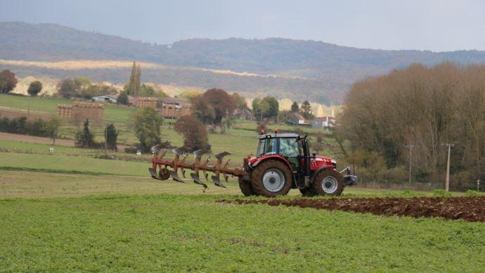 Selon des dizaines de spécialistes et observateurs agricoles, la France ne compterait pas plus de 250000 exploitations agricoles professionnelles à l'horizon 2040, contre plus de 440000 actuellement.