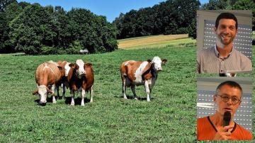Deux éleveurs bio face à lasécheresse: leurs stratégies pour s'adapter