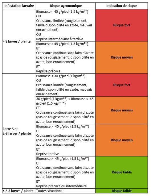 Grille de risque simplifiée concernant les larves de grosse altise