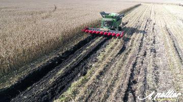 Les chenillards viennent à bout des conditions de récolte extrêmes du maïs grain