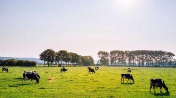14000 élevages déjà engagés dans une démarche environnementale avec Cap'2ER