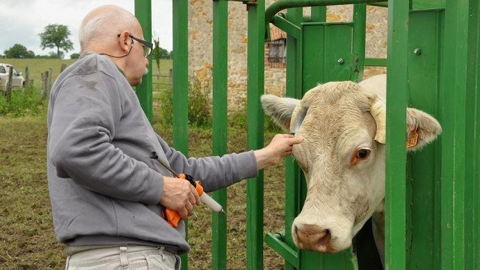 Dans certaines zones agricoles, il est de plus en plus difficile de trouver un vétérinaire.