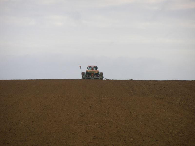 Semis de céréales d'hiver