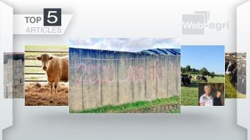 Les intrusions d'antispécistes dans les élevages sur le devant de l'actu