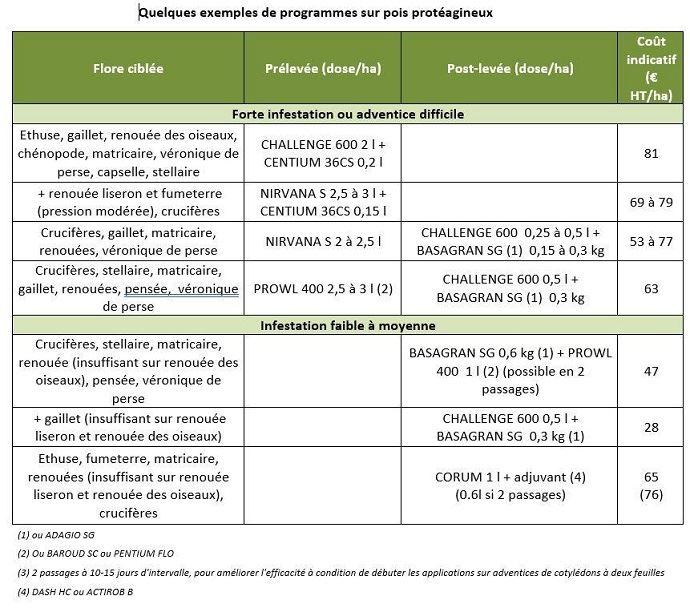 Exemples de programmes sur pois protéagineux