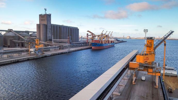 Les exports de blé restent toujours aussi dynamiques