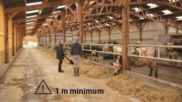 «Toujours des vaches à traire et à nourrir» mais un peu différemment...