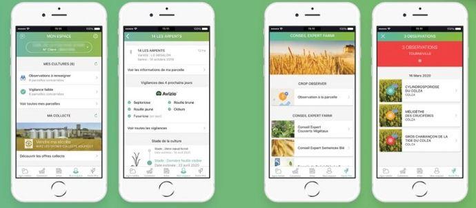 Avizio et Crop Observer sur l'application Farmi