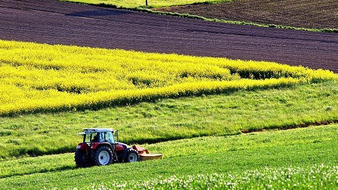 Début 2020, les éleveurs avaient déjà indiquer vouloir réduire leurs investissements 2020 par rapport à 2019. La pandémie de Covid-19 ne semble pas amplifier cette prudence.