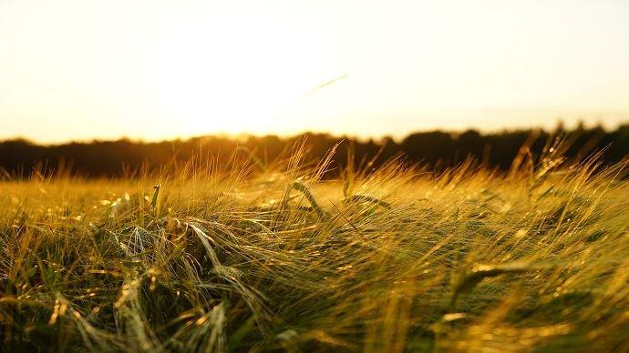 Le retour du sec en Europe est inquiétant