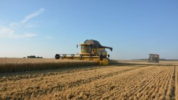 Quel temps pour les récoltes 2020 et les autres travaux des champs?