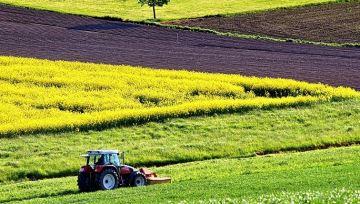 Fragilisés par la crise, les agriculteurs réclament leur part du plan de relance
