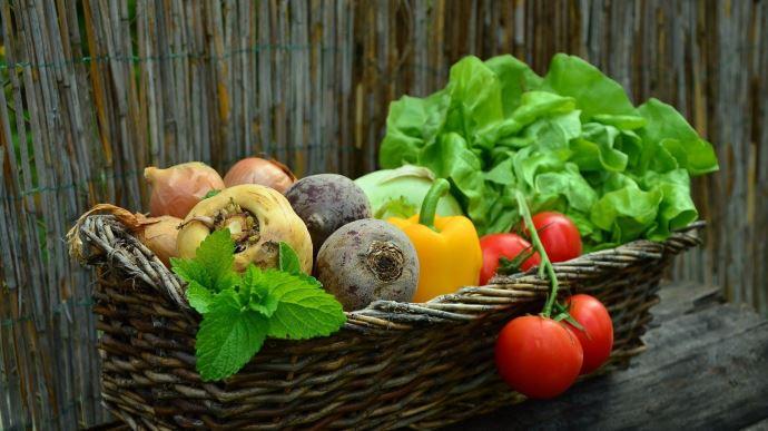 6,1% de la consommation alimentaire des ménages français était consacrée aux produits bio en 2019