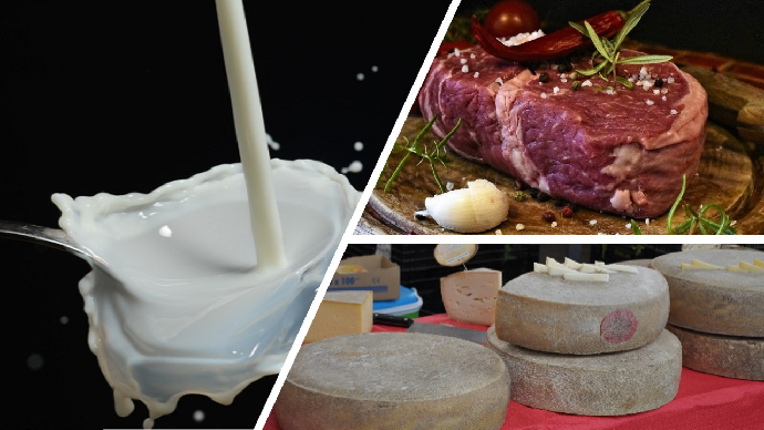 Produits laitiers et viande bovine