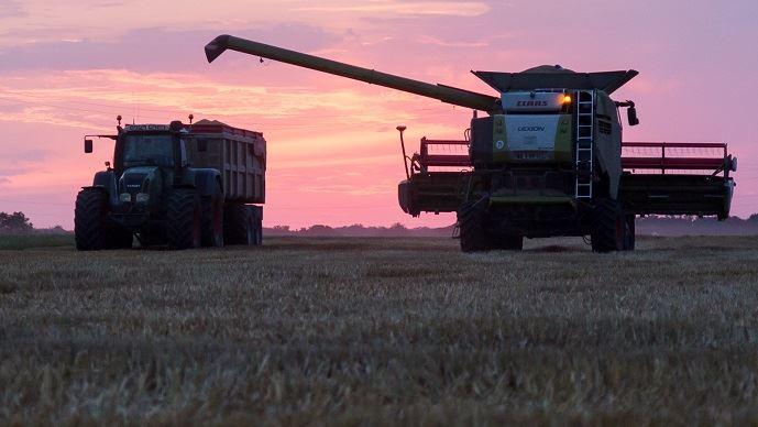 Le rendement moyen en blé s'améliore en Russie