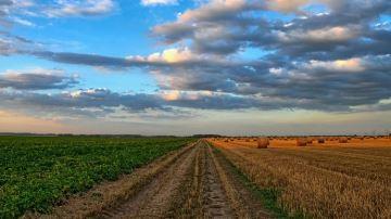 Renouvellement, prix, résiliation. : 10 mesures pour rénover le bail rural