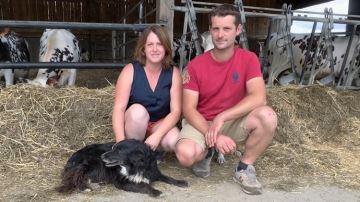 «Normande: la race idéale pour notre système et la transformation laitière»