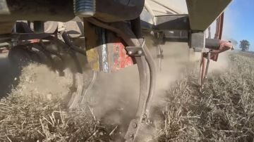 Les éleveurs s'inquiètent du manque d'eau pour la levée des dérobées